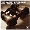 The Mozart Experience/Nicolas McGegan