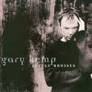 Little Bruises/Gary Kemp
