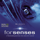 Forsenses - HP-SR 3D Soundtrack/blu::elements project