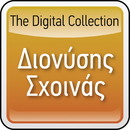 The Digital Collection/Dionisis Shinas