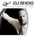 Feel Me (Through The Radio)/DJ Shog
