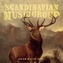 100 km Ouluun (2009 versio)/Scandinavian Music Group