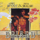 Briad Revisited/Andy McCoy & Pete Malmi
