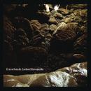 Carbon Stereoxide/Eraserheads