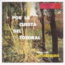 Por La Cuesta Del Totoral/Los Chalchaleros