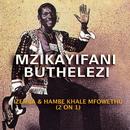 Izemba & Hambe Khale Mfowethu (2 On 1)/Mzikayifani Buthelezi