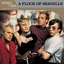 Platinum & Gold Collection/A Flock Of Seagulls
