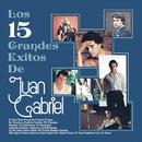 Los 15 Grandes Exitos De Juan Gabriel/Juan Gabriel