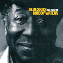Blue Skies - The Best Of Muddy Waters/Muddy Waters