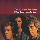 If You Could Hear Me Now/The Walker Brothers