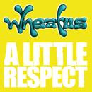 A Little Respect/Wheatus