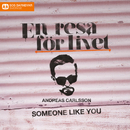 Someone Like You/Andreas Carlsson