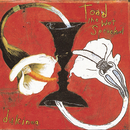 Dulcinea/Toad The Wet Sprocket