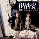 Shaming Of The Sun/Indigo Girls