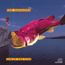 Law Of The Fish/The Radiators