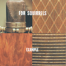 Example/For Squirrels