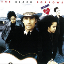Harley & Rose/The Black Sorrows