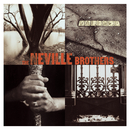 Valence Street/The Neville Brothers