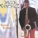 Street Scenes/David Sanchez