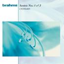 Brahms:  Sextets Op. 18 & Op. 36/Anner Bylsma, L'Archibudelli