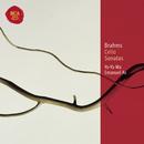 Brahms Sonatas for Cello and Piano: Classic Library Series/Yo-Yo Ma