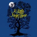 A Little Night Music (Original Broadway Cast Recording)/Original Broadway Cast of A Little Night Music