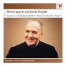 Bruno Walter conducts Mozart/Bruno Walter