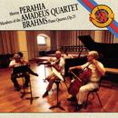 Brahms:  Quartet for Piano and Strings in G Minor, Op. 25/Murray Perahia, Amadeus Quartett