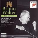Dvorák: Symphonies Nos. 8 & 9/Bruno Walter