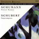 Waldszenen Op. 82; Four Impromptus, Op. 90; Papillons Op. 2/Pavel Jegorov & Vladimir Shakin