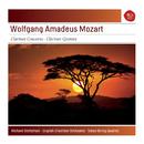 Mozart: Clarinet Concerto - Clarinet Quintet/Richard Stoltzman