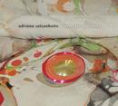 O Micróbio do Samba (Jewel Case Version)/Adriana Calcanhotto
