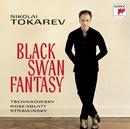 Black Swan Fantasy/Nikolai Tokarev