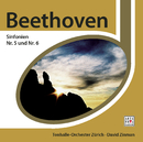 Beethoven Sinfonie Nr. 5&6/David Zinman