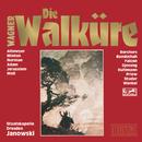Die Walküre - Oper in drei Aufzügen/Marek Janowski