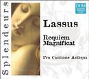 DHM Splendeurs: Lassus: Requiem A5 / Magnificat/Pro Cantione Antiqua London