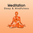 Meditation (Sleep & Mindfulness)/Sleepy Times