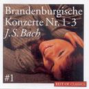 Best Of Classics 1: Bach - Brandenburg Concertos/Ross Pople