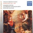Bach, J.S.: Motets BWV 225-230/Reinhard Kammler