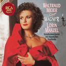 Waltraud Meier Sings Wagner/Waltraud Meier