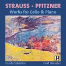 Hans Pfitzner: Sonate, Op.1 / Richard Strauss: Sonate, Op. 6/Guido Schiefen