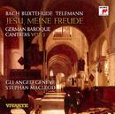 German Baroque Cantatas Vol. 2/Gli Angeli Genève