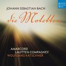 Bach: Die Motetten/Lautten Compagney