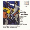 Telemann: Suite Don Quichote, Various Concertos/Jürgen Geise
