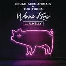 Wanna Know feat.R. Kelly/Digital Farm Animals
