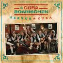 Schwiegermutter tanz amoi/Die CubaBoarischen
