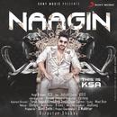 Naagin/Karan Singh Arora