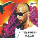 Y.B.C.D/Yoga Bunnies
