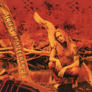 My Song - EP/Jerry Cantrell