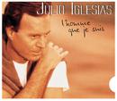 L'homme Que Je Suis/Julio Iglesias
